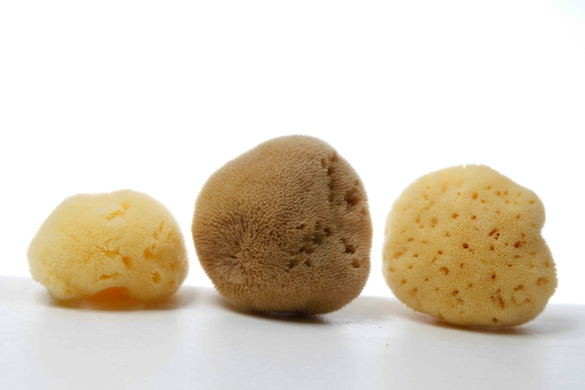 Silk Fine top quality Mediterranean sea sponge (bleached or natural color - available in a wide size range)