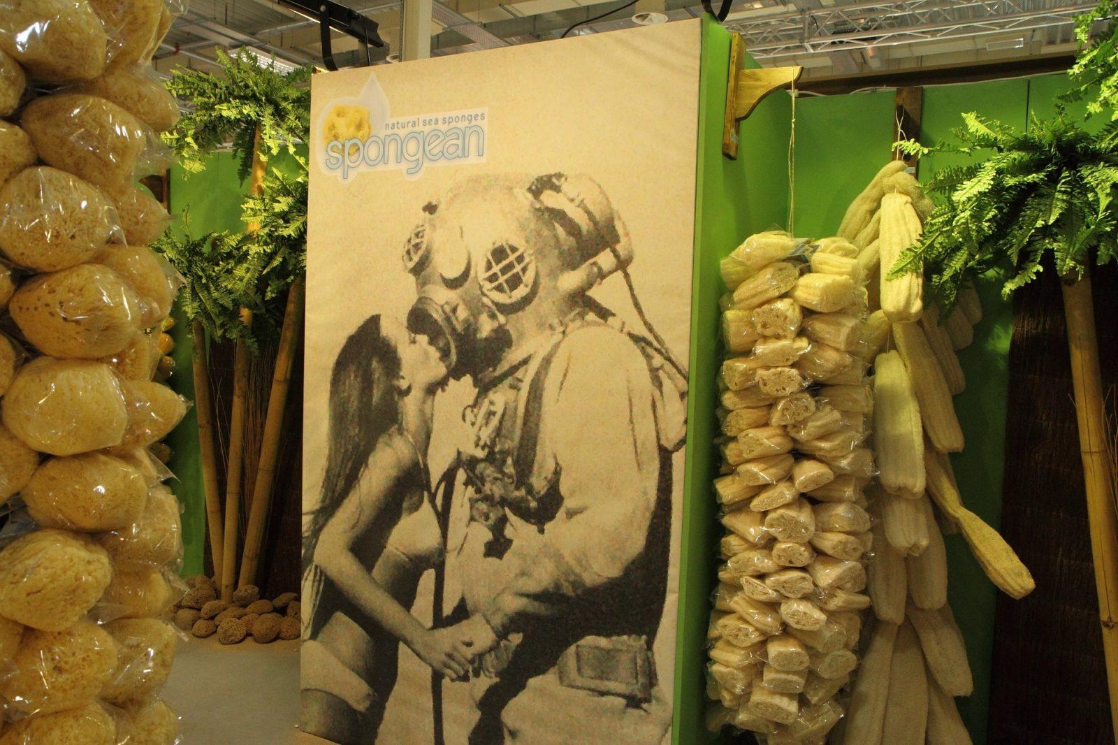 Spongean - A natural sea sponge bulk supplier