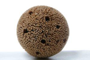 Honeycomb Mediterranean Sea Sponge (Natural Color) | Spongean